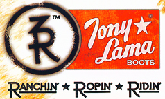 Image result for tony lama 3r work logo